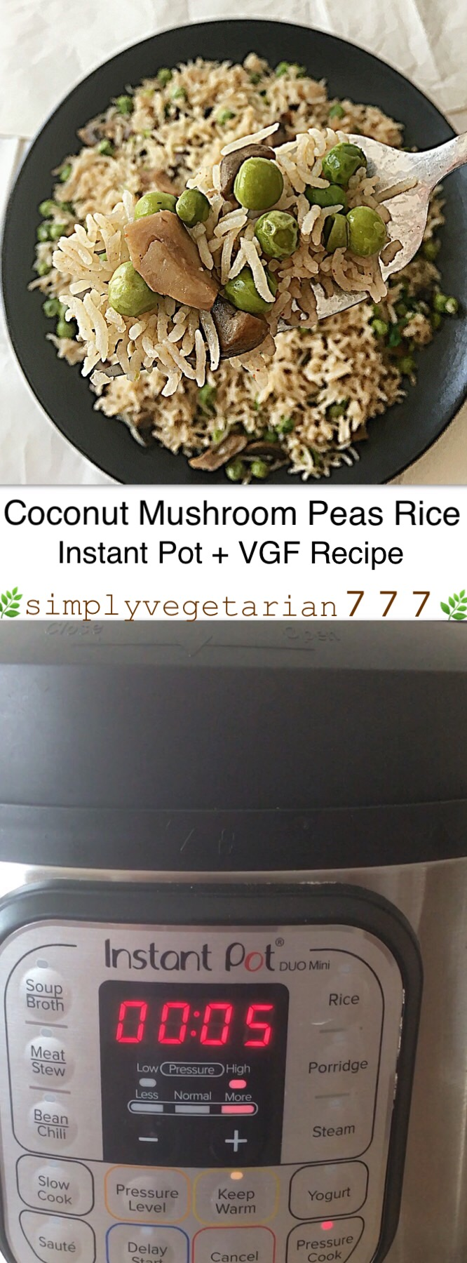 This Instant Pot Coconut Rice is cooked with only 5 main ingredients. It is a fail-proof recipe that is Easy, Efficient and Deliciously Vegetarian cooked in Instant Pot. The best part is that you can personalize it any way that you like. These taste best when served Hot. Coconut Curry Rice can be easily paired with korma, curry or savored as is. Stove Top and Pressure cooker instructions are also included in the description. A video snippet is included for the better understanding. #instantpotrice #coconutrice #coconutmilkrice #ricerecipes #coconutrecipes #instantpotveganrecipes #instantpotglutenfreerecipes #instantpoteasyrecipes #instantpotbeginnerrecipes