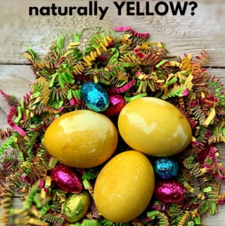 Chemical free Easter eggs dying