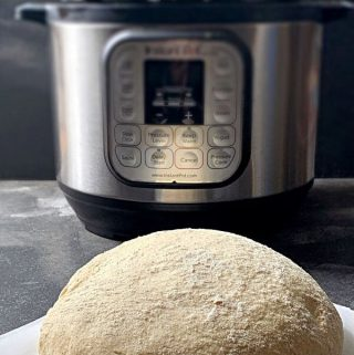 How to proof Pizza Dough in Instant Pot?
